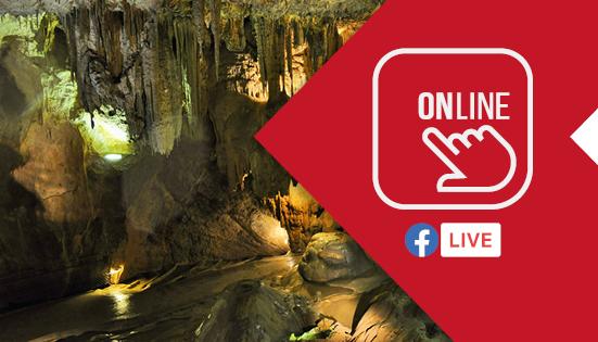 Tesoros de las cuevas: vida, enfermedades y maravillas